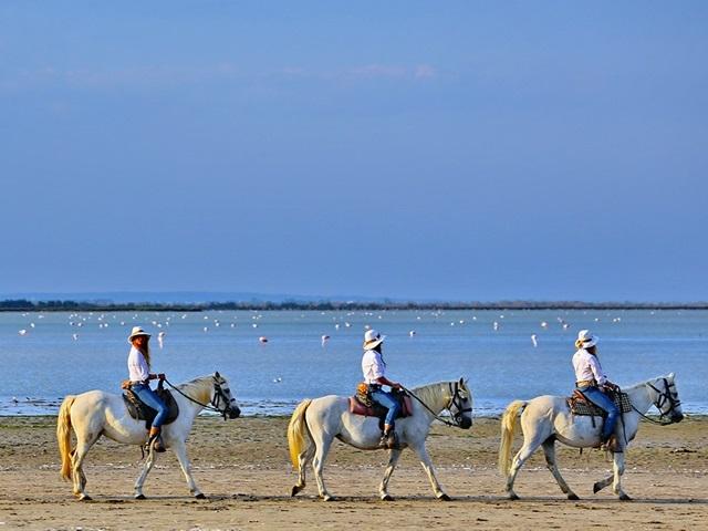 Journée Balade à cheval - Coup de Coeur - balade à cheval en Camargue