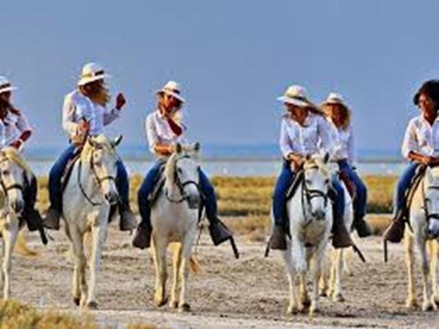 BON CADEAU : Journée découverte pour 2 personnes -  à cheval en Camargue