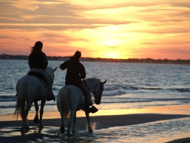 BALADE VIP LOVE STORY  BORD DE MER  - balade à cheval en Camargue