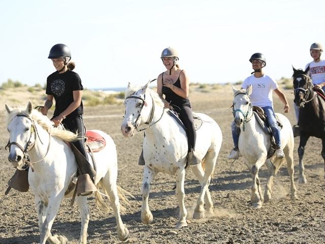 SUPER PROMO SPÉCIAL FAMILLE CONTACTEZ NOUS  -  à cheval en Camargue